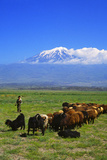 Mount Ararat Photographic Print by Charles Bowman
