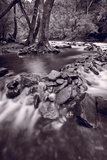 Pigeon Forge River Great Smoky Mountains BW Photographic Print by Steve Gadomski