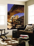 Pinyon Pine Below Hickman Bridge, Capitol Reef National Park, Utah, USA Wall Mural by Scott T. Smith