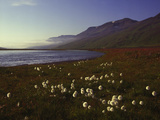 Iceland Landscape Photographic Print by Charles Bowman