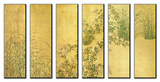 Japanese Autumn Grasses, Six-Fold Screen, Early Edo Period Druck aufgezogen auf Holzplatte