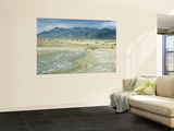 Black Rock Desert and High Rock Canyon Emigrant Trails National Conservation Area, Nevada, USA Wall Mural by Scott T. Smith