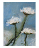 Queen Anne Lace Giclee Print by Janel Bragg