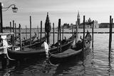 Gondolas of St Marks Square, Venice, Italy Fotografie-Druck von George Oze
