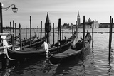 Gondolas of St Marks Square, Venice, Italy Photographic Print by George Oze