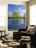 Pond Reflects Aspen & Cirrus Clouds at Sunrise on Steens Mountain, Oregon, USA Premium Wall Mural by Scott T. Smith