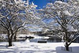 Snow Covered Trees at Riverside Photographic Print by George Oze