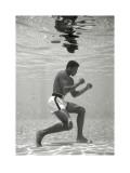 Muhammad Ali Plakát