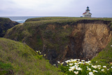 Lighthouse and Lilies, Point Cabrillo, Mendocino Photographic Print by George Oze