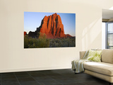 Temple of the Sun, Lower Cathedral Valley, Colorado Plateau, Capitol Reef National Park, Utah, USA Wall Mural by Scott T. Smith