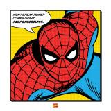 Spider-Man, Con un gran poder, cita en inglés Póster