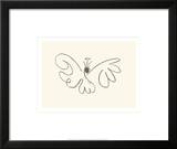 The Butterfly Prints by Pablo Picasso