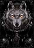 Wolf Dreams Posters