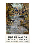 North Wales Giclee Print