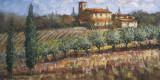 Tuscan Olives Affiches par Malcolm Surridge