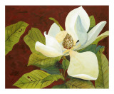 Magnolia II Prints by George Caso