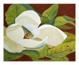 Magnolia I Poster by George Caso