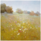 Meadow in Summer Prints by Scott Clifton