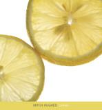 Limón Lámina por Mitch Hughes