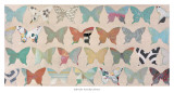 Butterfly Collection Art by Jodi Fuchs