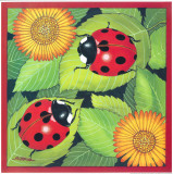 Ladybird II Posters by Urpina 