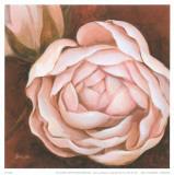 Pink Flower II Prints