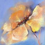 Bright Anemone I Prints by Elena Filatov