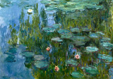 Seerosen Posters by Claude Monet