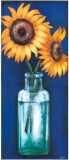 Bottled Flowers II Prints by  Ferrer