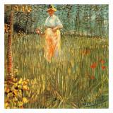 Femme Dans Un Jardin Posters by Vincent van Gogh