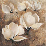 Magnolia I Prints by Volynets