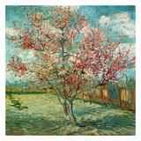 花咲く桃の木 1888年 高品質プリント : フィンセント・ファン・ゴッホ
