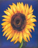 Great Sunflower Prints by  Ferrer