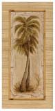 Palm Tree II Prints by L. Romero