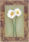 Flowers In Brown Frame II Poster by  Ferrer