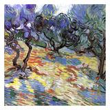 Les Oliviers Affiches par Vincent van Gogh