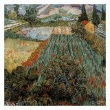 Champs Aux Coquelicots Prints by Vincent van Gogh