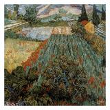 Champs Aux Coquelicots Posters by Vincent van Gogh