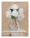 Floral IV Posters par  Bravo