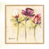 3 Fleurs Prints by Pascal Cessou