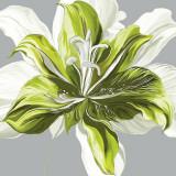 Spring Greens I Posters by Sally Scaffardi