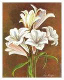 Bouquet Azucenas I Poster von A. Vega