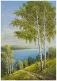 Birches At The Lake II Prints by Helmut Glassl
