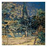 Marches De Pierres Dans Le Jardin De L'Hospice Posters by Vincent van Gogh