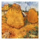 Meules De Foin En Provence Prints by Vincent van Gogh