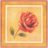 Red Roman Rose Prints by Lewman Zaid