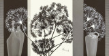 Delicate Twigs Print by Franz Heigl
