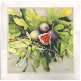 Branche D'Oliviers Et Figues Prints by Vincent Perriol