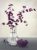 Royal Blossom II Print by Franz Heigl