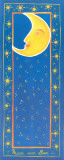 Moon And Sun Posters by Evol Lo